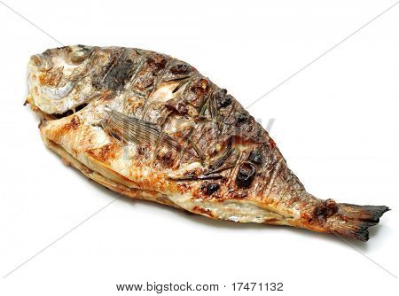 Grilled Dorado with Spicery over White