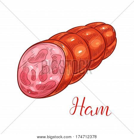Ham sausage sketch. Smoked sausage with pieces of ham mixed with ground pork meat and fat. Meat market, butcher shop, grocery shop food packaging design
