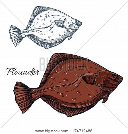 Flounder fish sketch. Ocean flatfish, predatory marine animal isolated sign for seafood menu, sea fishing or fish market symbol, underwater wildlife theme design