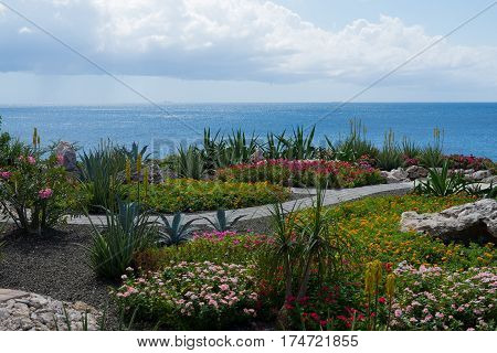 Dream travel destination all year - Caribbean region, Curacao island blue sea and colorful flowers