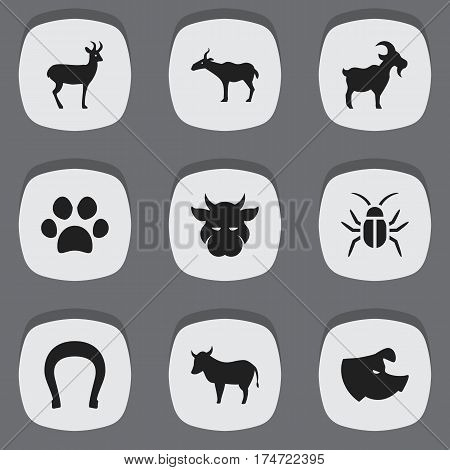 Set Of 9 Editable Zoology Icons. Includes Symbols Such As Kine, Livestock, Talisman And More. Can Be Used For Web, Mobile, UI And Infographic Design.