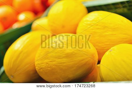 Fresh yellow melons displayed in a greengrocery.