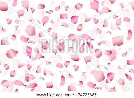 Flying pink japan sakura, cherry or rosa petals vector seamless romance pattern. Blossom sakura spring, illustration of oriental cherry sakura petals