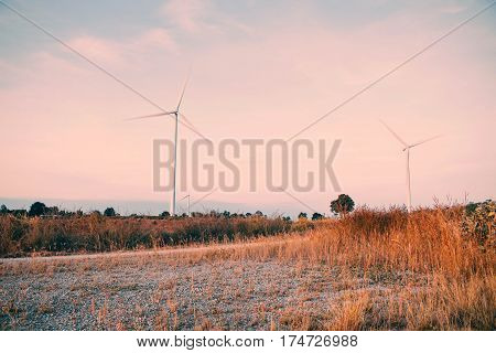 Meadow in the countryside with wind turbines.
