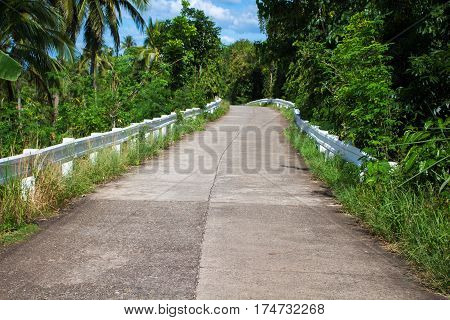 Tropical landscape with empty road and green roadside. Tropic forest travel by bike. Wild nature road journey concept image. Exotic greenery with coco palm trees. Tropical paradise travel banner