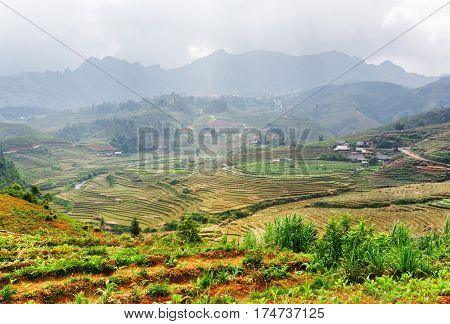 Top View Of Rice Terraces At Highlands. Sa Pa, Vietnam