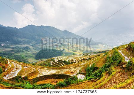 Rice Terraces Filled With Water At Highlands Of Sa Pa, Vietnam