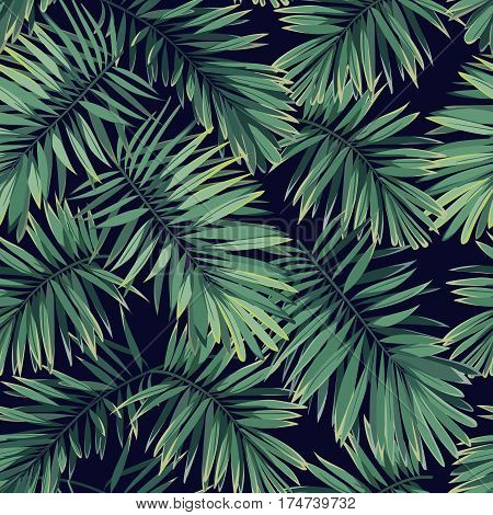 Dark tropical pattern with exotic plants.Seamless tropical pattern with green phoenix palm leaves. Vector illustration.