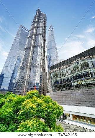 Bottom View Of The Jin Mao Tower And Other Skyscrapers, Shanghai