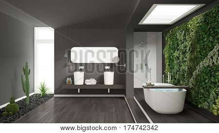 Minimalist Gray Bathroom With Vertical And Succulent Garden, Wooden Floor And Pebbles, Hotel, Spa, M