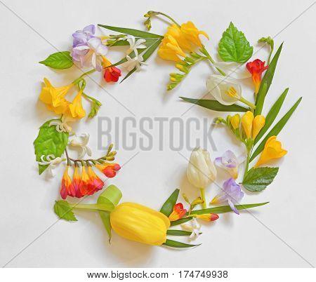 Round Spring Flower Frame on white background