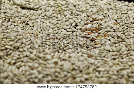 Market Bazaar Showcase With Wide Range Of Varicolored Sorts Of Raw Dry Beans.