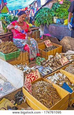 Boxes With Dried Fish