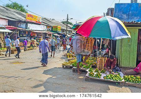 Fresh Fruits At Manning Market