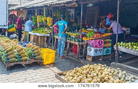 The Fruits Of Sri Lanka