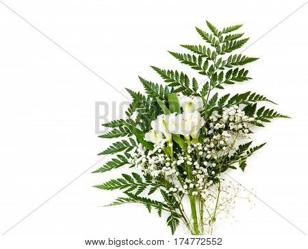bouquet of white Alstroemeria with fern isolated on white background.
