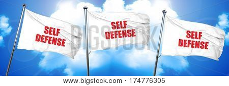self defense, 3D rendering, triple flags