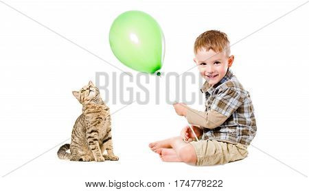Cheerful kid and curious cat Scottish Straight, isolated on white background