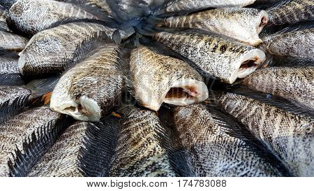 Drying snakeskin gourami fishes and backgroud .
