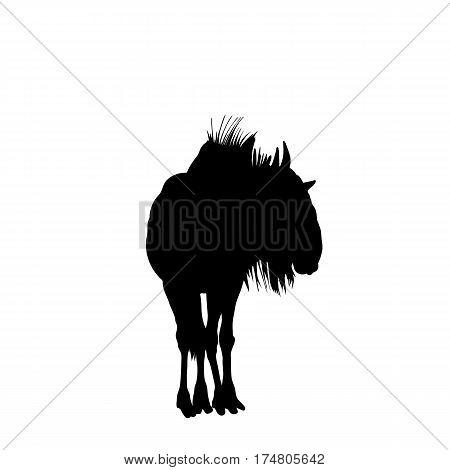 Blue Wildebeest on the walk - Silhouette - digitally hand drawn Vector Illustration