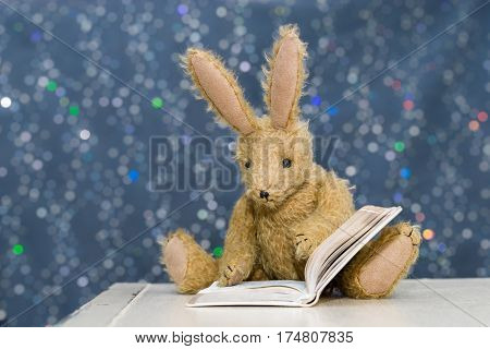 Cute Child's Toy Rabbit Reading At Storytime.