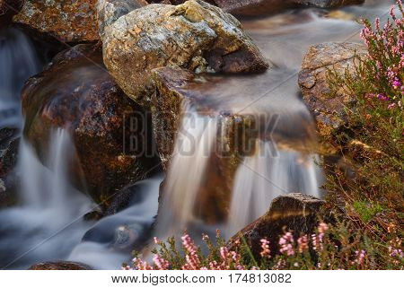 A clear mountain stream in near Beddgelert in the Snowdonia National Park in North Wales surrounded with wild heather. Shot with a long exposure to accentuate the flow of the water