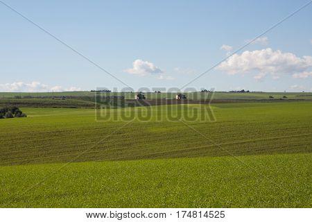 Campagna un campo aperto erba e panorama