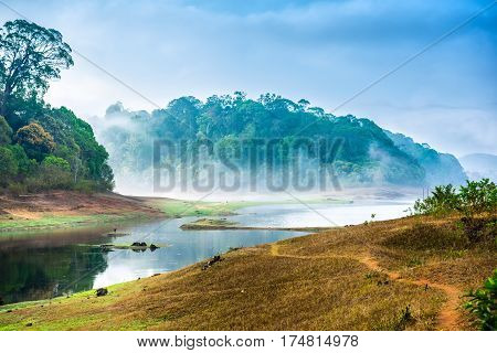 Beautiful Landscape With Wild Forest And River With Fog In India. Periyar National Park, Kerala, Ind