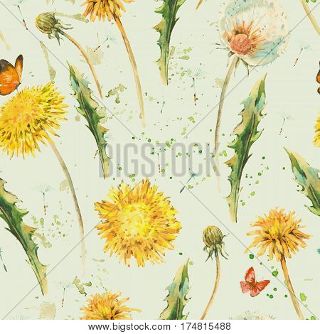 Watercolor seamless pattern with spring flowers yellow and white dandelions, butterfly. Natural hand painted floral watercolor illustration on beige background