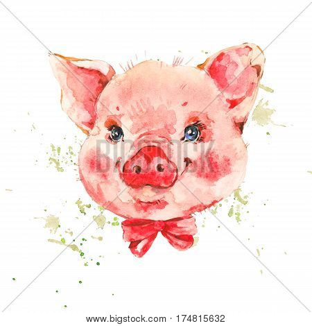 Cute piggy with red bow. Animal pig watercolor illustration. Hand painted art work isolated on white background
