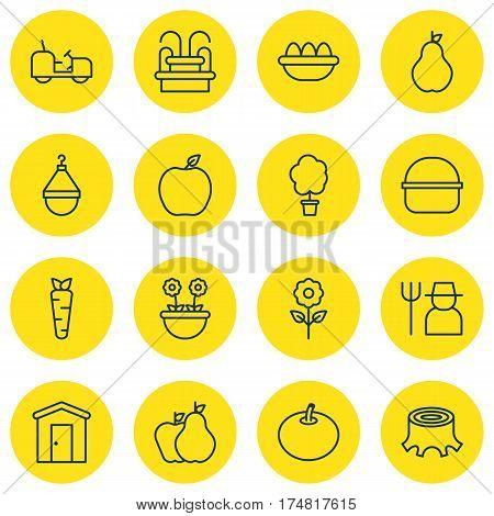 Set Of 16 Plant Icons. Includes Radish, Agrimotor, Fruits And Other Symbols. Beautiful Design Elements.