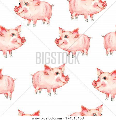 Watercolor seamless pattern with cute piggy. Animal pig watercolor illustration. Hand painted art work on white background
