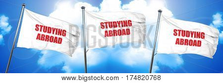 studying abroad, 3D rendering, triple flags