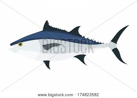 Tuna on white background. Color vector image of tuna fish. Animal marine fauna. Stock vector illustration