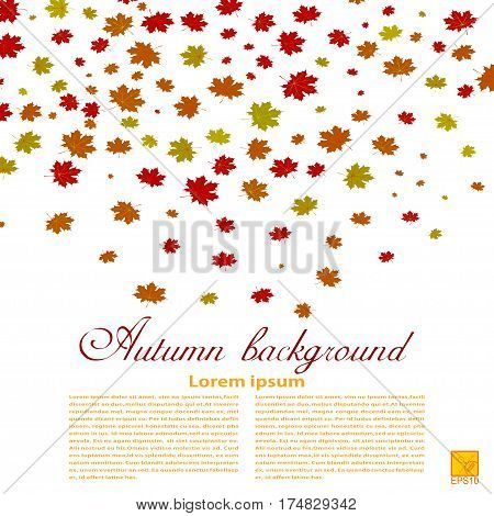 Autumn background. Illustration of falling red yellow and green maple leaves. Image season. Maple leaves on a white background. design element wallpaper. Autumn weather. Stock vector illustration