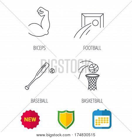 Baseball, football and basketball icons. Biceps linear sign. Shield protection, calendar and new tag web icons. Vector