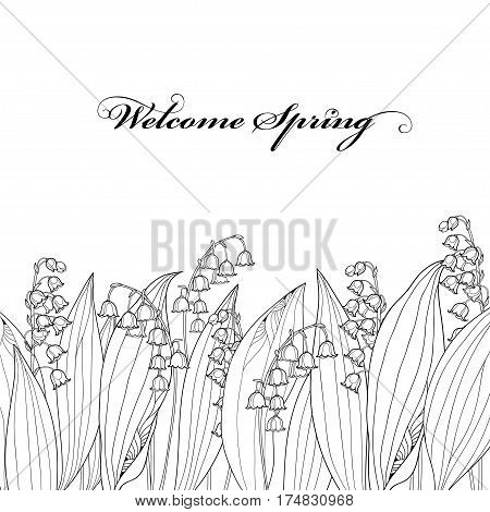 Vector border with outline Lily of the valley or Convallaria flower and leaf isolated. Ornate floral element for spring design, greeting card or coloring book. Border with May lily in contour style.