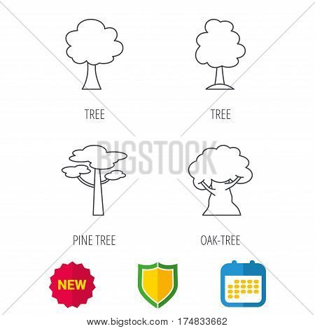 Pine tree, oak-tree icons. Forest trees linear signs. Shield protection, calendar and new tag web icons. Vector