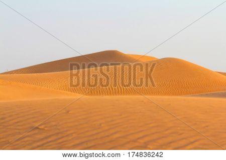 Yellow dunes in desert. Dunes in desert
