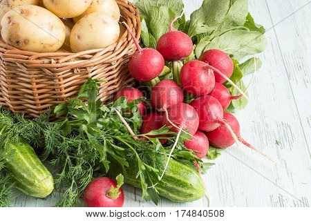 Fresh vegetables. Wicker basket with new potatoes, a bundle of radish, sprigs of dill and parsley on a light wooden table.