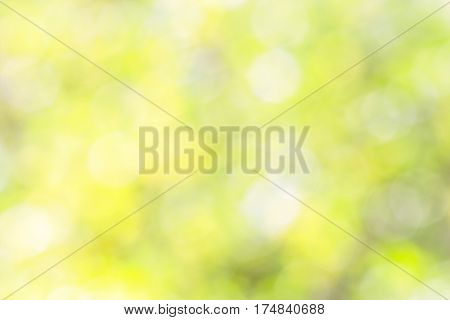 Pastel blurred spring background with white green and yellow spots
