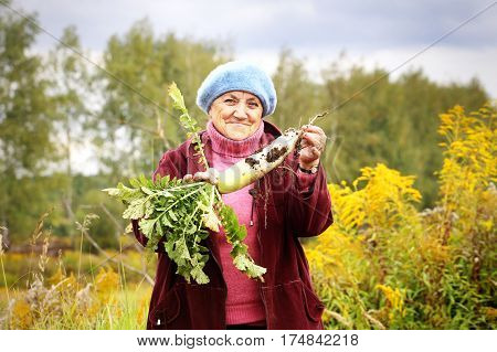 Grandmother with harvest on the farm. Old woman