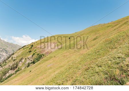 Hill covered with green grass and sky in the daytime