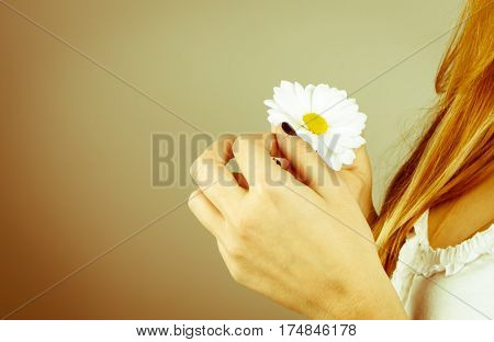 blonde girl's hands holding a daisy flower