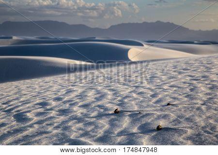 A sand storm in the desert near Alamogordo New Mexico taken in June 2015.