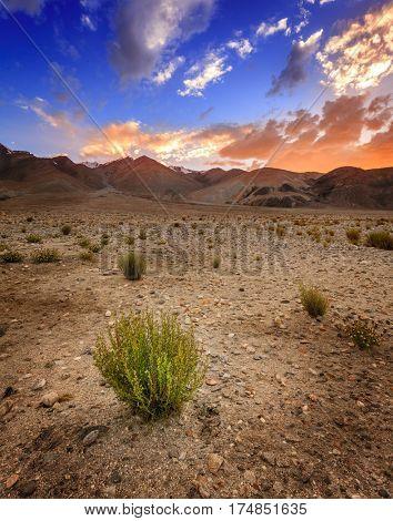 Highland landscape near Pangong Tso Lake in Western Himalayas near India-China border