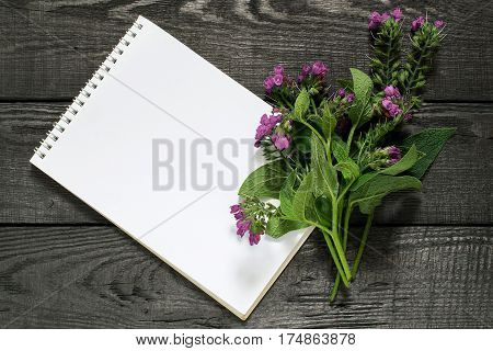 Medicinal plant comfrey (Symphytum officinale) and notebook to write recipes and methods of application. Used for outdoor applications promotes splicing bones. Caution there are contraindications poster