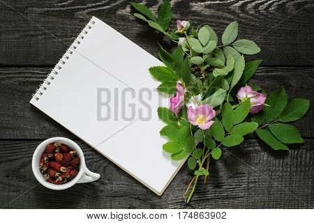 Branch of blossoming rose hips dried briar and notebook to write recipes and methods of application. Used in herbal medicine nutrition horticulture
