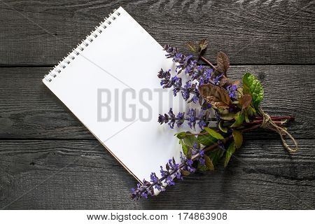 Medicinal plant Ajuga reptans and notebook to write recipes and methods of application. Ajuga reptans used in herbal medicine edible plant nectariferous and is used in horticulture