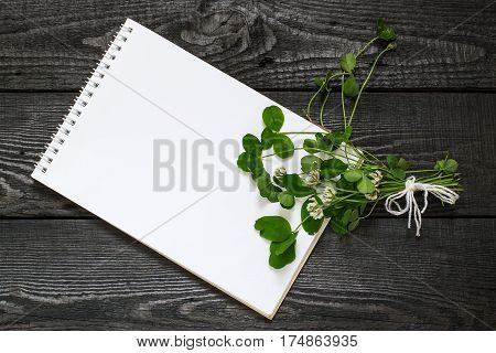 Medicinal plant Trifolium repens or white clover (also known as Dutch clover and Ladino clover) and notebook to write recipes and methods of application. Used in herbal medicine honey plant